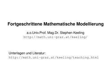 Fortgeschrittene Mathematische Modellierung