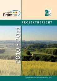 Projektbericht 2010-2011