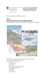 Allgemeine Darstellung des Risikokonzepts - Planat