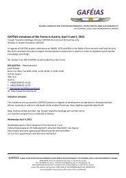 Report (download) - GAFÉIAS