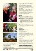 Naturschauspiel Ibmer Moor - Seelentium - Seite 7