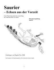 Saurier in der Dauerausstellung - Naturmuseum St.Gallen