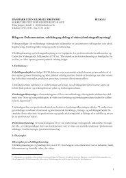 Bilag om Dokumentation, udvikling og deling af viden