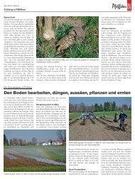 Gemüsebau im Frühling / PfäffikerIn, April 2012 - Stiftung zur Palme