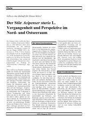 (PDF) Fische - SDN