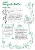 Biologische Vielfalt: Schülerarbeitsheft für die Grundschule - BMU - Seite 6