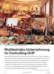 Multibetriebs-Unternehmung im Controlling-Griff - Philipp Egli ...