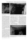 Sensationelle megalithische Nekropole bei ... - Gernot L. Geise - Seite 6