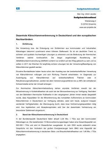 pdf Nanotechnology and human health
