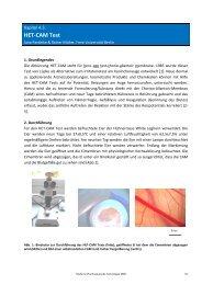 HET-CAM Test - Pharmazie-Lehrbuch