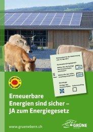 Erneuerbare Energien sind sicher – JA zum Energiegesetz