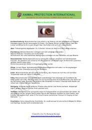 """Meerschweinchen"""" - Akademie für Tierschutz- und Wildtierforschung"""