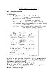 Infektionskrankheiten durch Bakterien