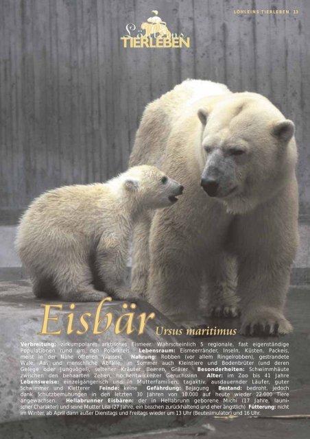 Eisbär - Tierparkfreunde Hellabrunn eV