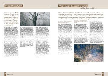 Wie reagiert die Forstwirtschaft Projekt ForeStClim - in Rheinland-Pfalz