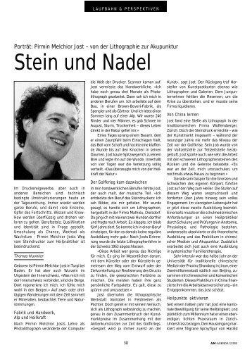 Stein und Nadel. Pirmin Melchior Jost - von der Lithographie zur ...