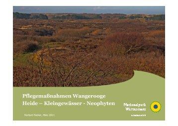 Pflegemaßnahmen Wangerooge Heide - Nationalpark Wattenmeer