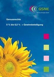 GSNE Wertpapierprospekt 2009-06-13 - Anleihen-Finder.de
