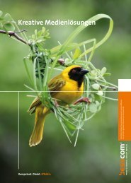 Imagebroschüre (PDF-Datei, 1,3 MB) - Besscom AG
