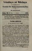 Verhandlungen und Mitteilungen des ... - Museu Nacional - Seite 4