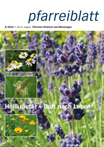 Heilkräuter – Duft nach Leben - Pfarrei Hitzkirch