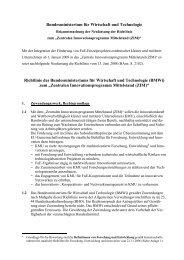 richtlinie-02 (pdf) - ZIM