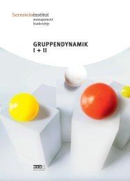 GRUPPENDYNAMIK I + II - Hernstein Institut für Management und ...