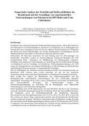Numerische Analyse der Toxizität und Sichtverhältnisse im ...