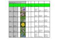 Aktuelles Wildblumen Sortiment April 2013 (pdf) - Wildblumen Pointl