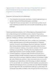 Oppsummering av de viktigste funn i evalueringen av Programmet ...