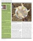 Haupteportage «Der bedrohte Garten im Sahel - Seite 7