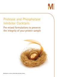 Protease and Phosphatase Inhibitor Cocktails - Millipore