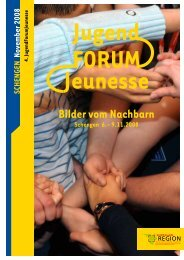 Bericht JUGENDFORUMJEUNESSE 2008