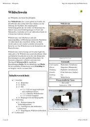 Wildschwein – Wikipedia - Klasse Schaad