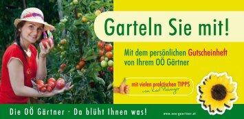 downloaden - Blumenhaus und Gartenbau Mayer