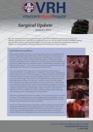 Jan 2011 Newsletter - Veterinary Referral Hospital