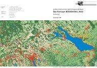 Kurzfassung Studie BODAN-RAIL 2020 - Vorarlberg