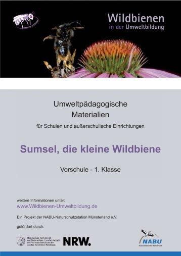 Sumsel, die kleine Wildbiene - Wildbienen in der Umweltbildung