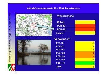 Überblicksmessstelle Rur End Steinkirchen Schwebstoff: Wasserphase