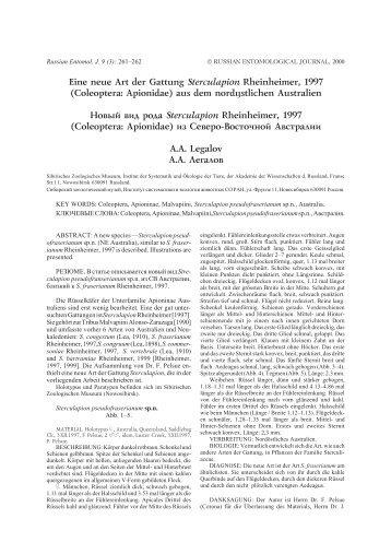 Eine neue Art der Gattung Sterculapion Rheinheimer, 1997 - СО РАН
