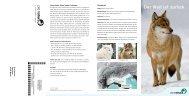 Der Wolf ist zurück» (pdf) - Pro Natura