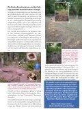 NABU-Forderungen zur Änderung der Wildfütterungsbestim ... - Seite 4