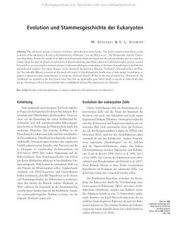 Evolution und Stammesgeschichte der Eukaryoten