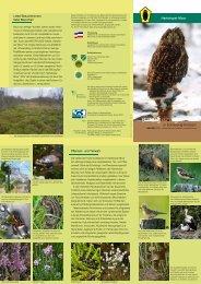 Hartshoper Moor - Landesamt für Landwirtschaft, Umwelt und ...