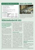 Wald + Wild das Infoblatt des Steir. Jagdschutzvereins Zweigstelle ... - Seite 6