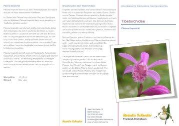 freiland orchideen ursula schuster. Black Bedroom Furniture Sets. Home Design Ideas