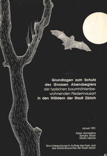 Der Grosse Abendsegler im Stadtwald von Züric - SWILD