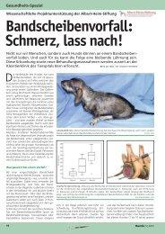 Herunterladen (PDF) - Albert-Heim-Stiftung