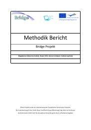Final Report on the Methodology - Bridge