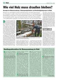 Wie viel Holz muss draußen bleiben? - Bayerische Landesanstalt für ...